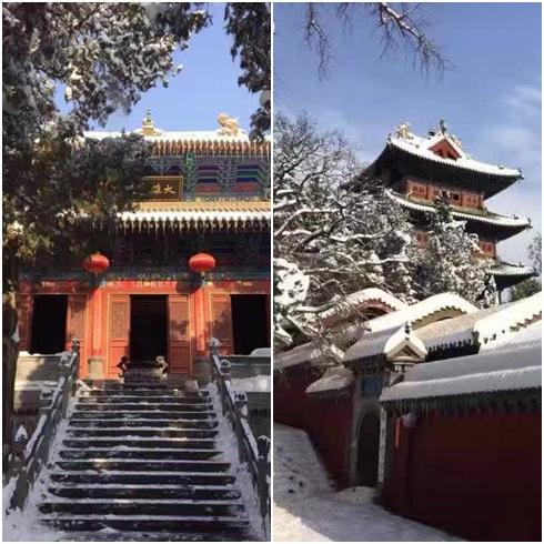 雪景少林寺2016